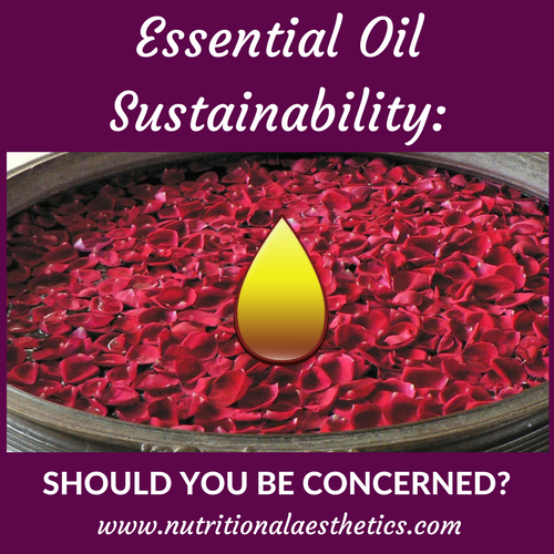 Essential Oils Sustainability