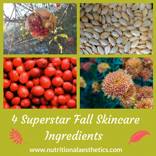 4 Superstar Fall Skincare Ingredients
