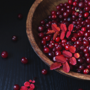 cranberry seed oil is pressed from the seeds of cranberries