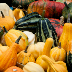 Pumpkin and squash are excellent fall foods for healthier skin.