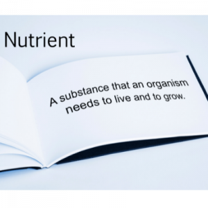 definition of nutrients